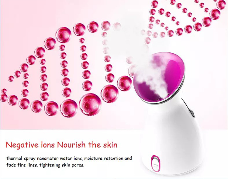 Private Label Portable Electric Face Steamer Handheld Nano Ionic Hot Spray Facial Steamer For Home Use