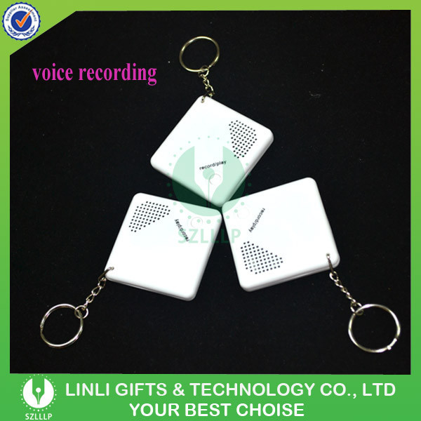 Promotion Custom Mini Keychain Voice Recorder For Gifts, Cheap Keychain Voice Recorder With Logo For Brand Advertising