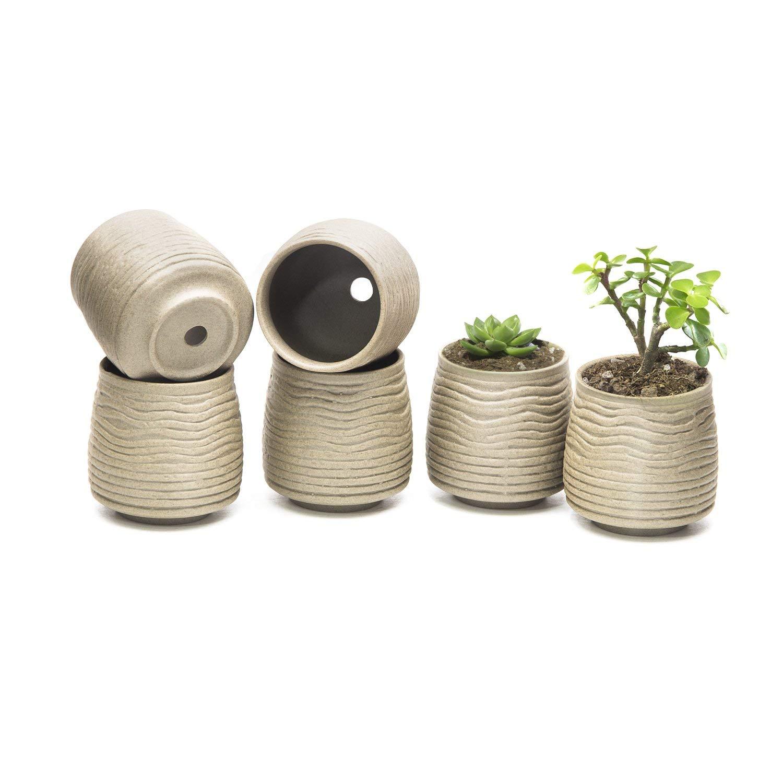 Goldblue Ceramic Ancient Style Serial Set Succulents Planters Pot Cactus Plant Pot Flower Pot Container Planter Pack of 6 (NO 1)