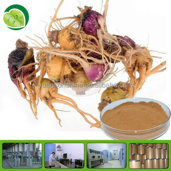 GMP factory supply maca extract in fine brown-yellow powder