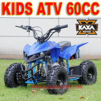Adults 4x4 1500cc Off Road Buggy