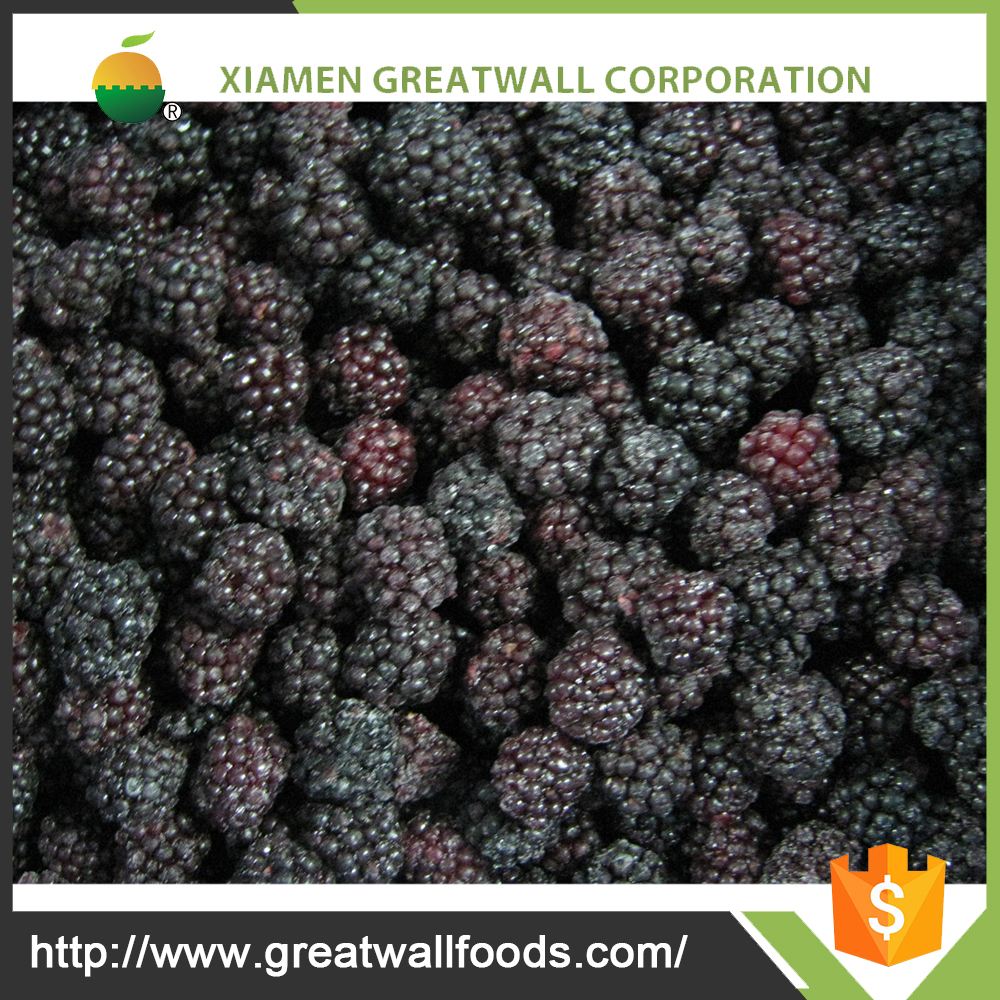 china supply bulk frozen blackberries