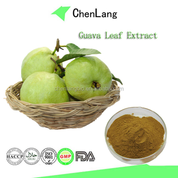 objectives for guava leaves extract The invention is related to the obtaining of phytomedicaments that contain standardized extracts coming from the guava plant (psidium guajava l), particularly from its leaves (psidii guajavae folium), useful for the treatment of diverse gastrointestinal diseases related to dysfunctions of the nervous system associated to gastrointestinal function.