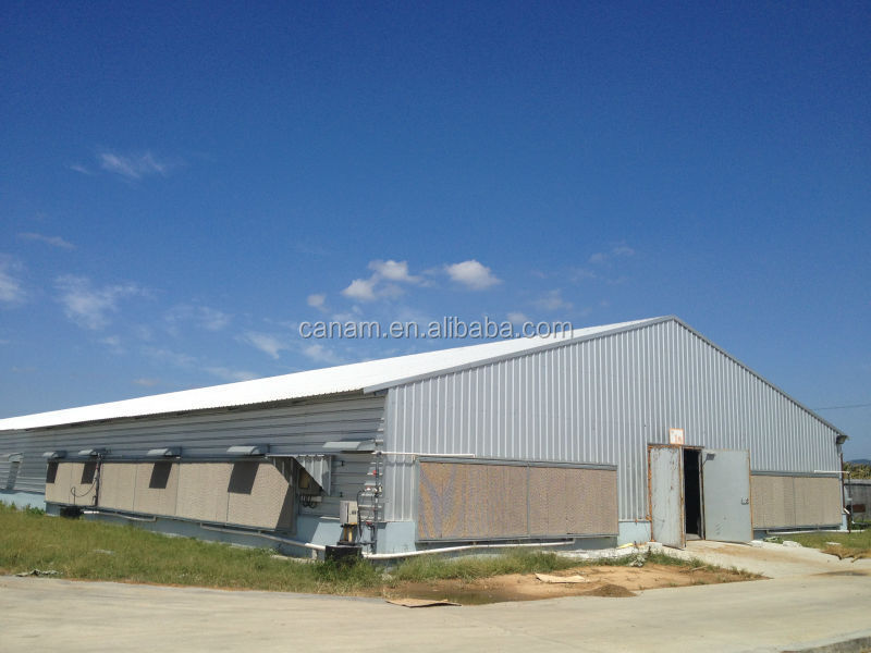 turnkey project poultry house for chicken