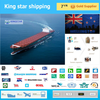 Professional shipping company Agent service Sea freight rates China to Dunedin New Zealand