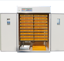 High Quality Full Automatic System Chicken Eggs Incubator for sale