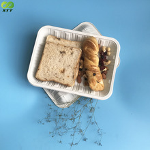 Lower price biodegradable bento box take away food tray disposable meat dishes
