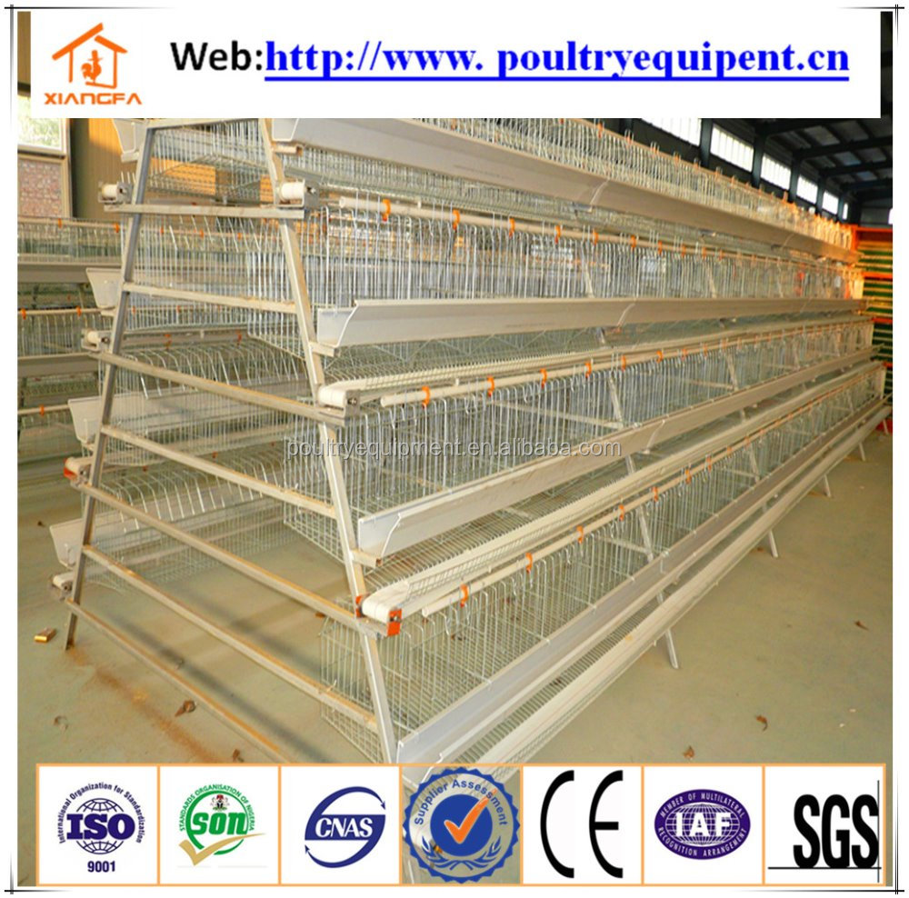 2017 New Design a type broiler chicken cage