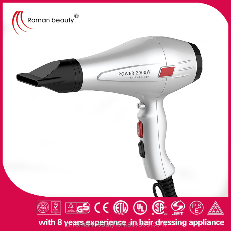 Professional plastic material 2 speed settings hair dryer