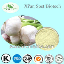 Hot Selling Natural Detox Powder Garlic Extract