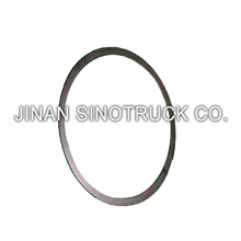 SINOTRUK HOWO Truck Spare Parts/ Auto Parts Seal Ring VG260110162