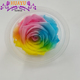 Mixed Color Real Preserved Plants Flower Long Lasting Rose