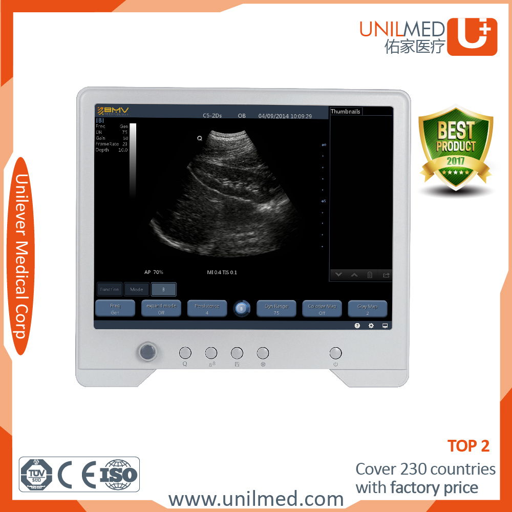 Professional Black and white tablet touch ultrasound scanner for dog breeder used