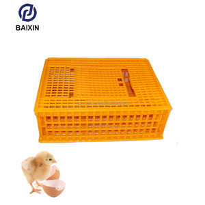 Low Price Plastic Poultry Equipment Cheap Chicken Feeding Automatic Chicken Feeder