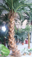 wholesal cheap large high quality steel pine fake artificial palm tree with real bark