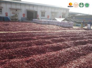 China Laoganma Supplier Chinese Manufacturer Exporter Sanying ...