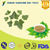 Pharmaceuticals Raw Materials Chinese Ivy Extract with Hederagenin