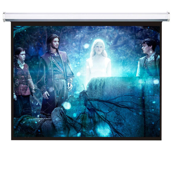 400 inch wall mounted projector screen