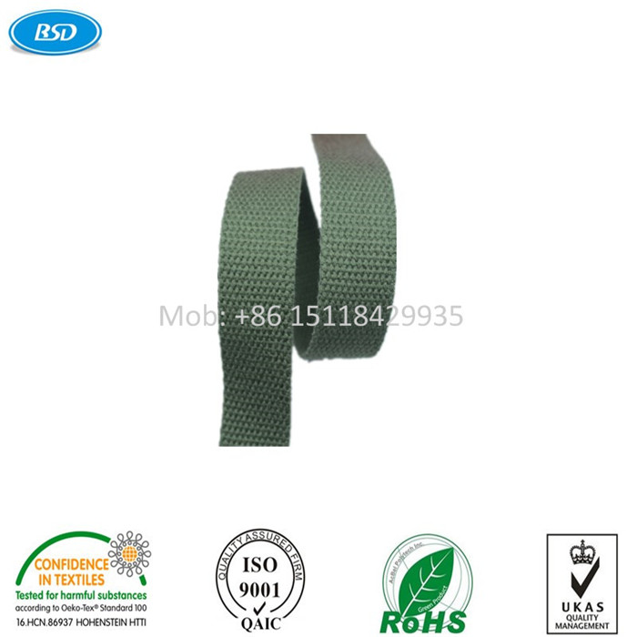 High Quality BSD manufacturer of 24 pin ribbon cable with Satin Tape Webbing