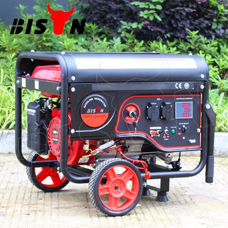 BISON(CHINA) New Product 2.5kw 6.5hp King Max Power Generators Gasoline Engine 2.5 kva Generator