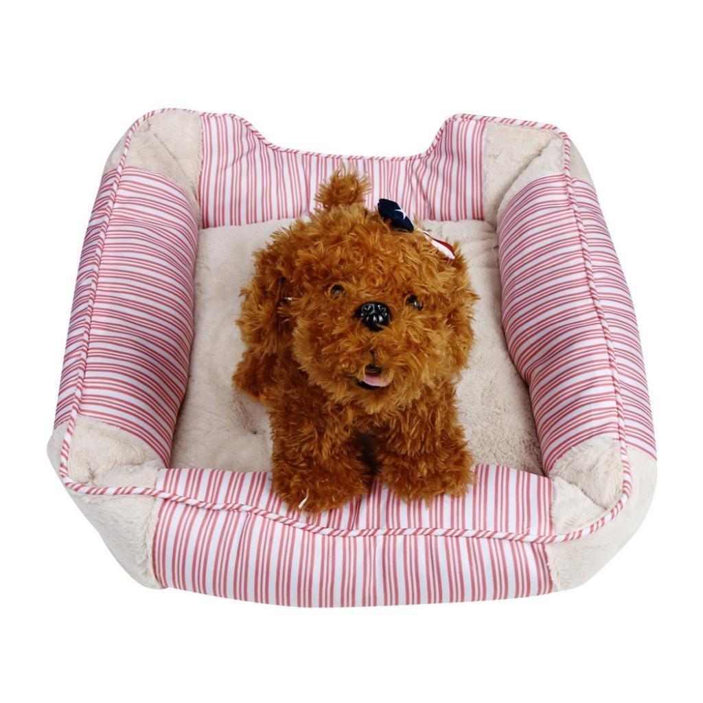 Buy Pet Bed Elevin Tm Collapsible Indoor Pet Dog Puppy Cat Shark