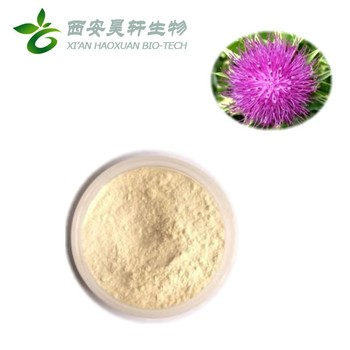haoxuan High quality Milk Thistle Extract Powder 80% Silymarin