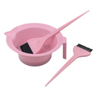 Brush Set Incredible Lowest Price Hair Dye Professional Bowl and Brush Tinting Set