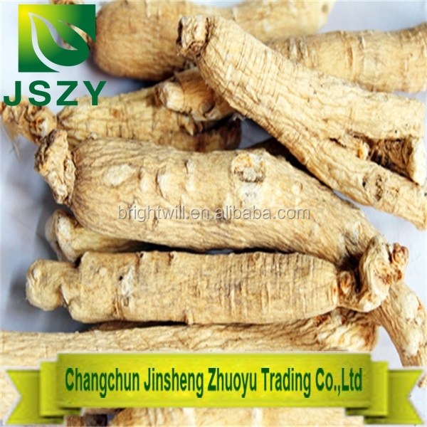 Organic natural Ginseng panax with Tail, White ginseng