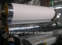 PP Single Layer Sheet/Plate Extrusion Line6-20mm thickness