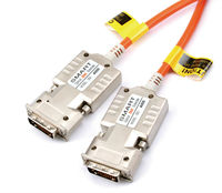 DDI, Optical DVI Cable