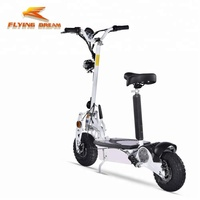 Foldable two wheels electric scooter 500w 800w 1000w