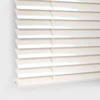 Vinyl 1 Inch Mini Blinds