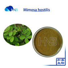 Mimosa hostilis extract Mimosa pudica extract sensitive plant powder