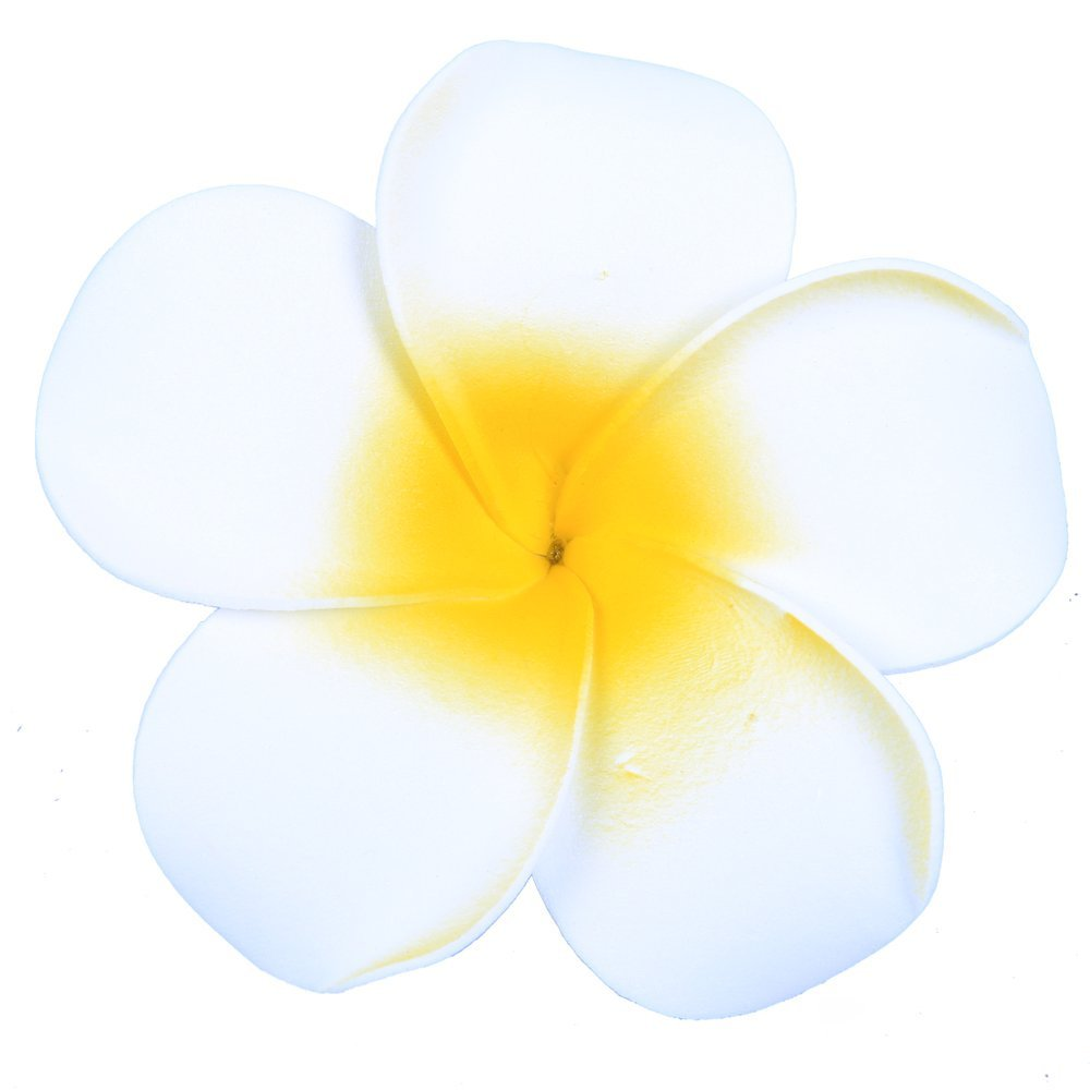 Cheap plumeria flowers hawaii find plumeria flowers hawaii deals on get quotations anleolife large white hawaiian hair flowersflorida beach plumeria wedding flowers fabulous foam hawaii frangipani izmirmasajfo