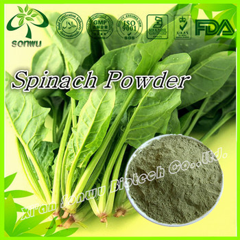 Natural spinach powder extract/dehydrated spinach powder