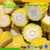 Passed ISO 22000 All Speficications Iqf Sweet Corn Kernels For Sale