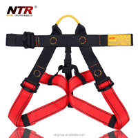NTR cheap safety belt high tenacity polyester belt