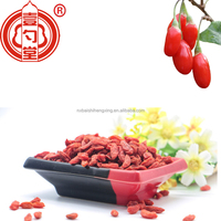 2019 low price AD china ningxia zhognning dried red medlar berries for sale