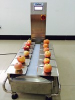 Table Top Combination Weigher/scale for fruits