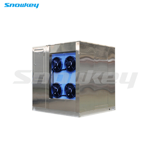 Snowkey Factory direct supply 3ton/day plate ice machine for sales