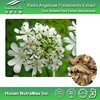 High Quality Natural Angelicae Pubescentis Extract