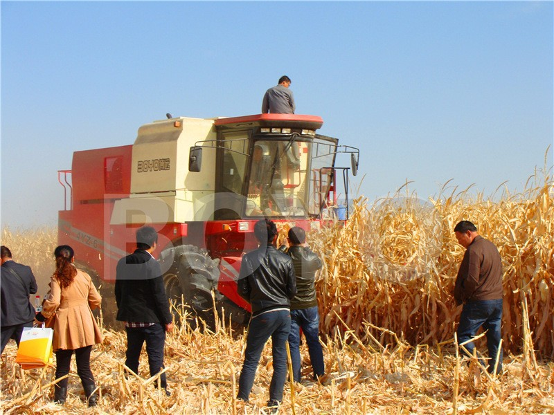 "30"" row spacin Grain harvesting machines for wheat and <strong>corn</strong>"