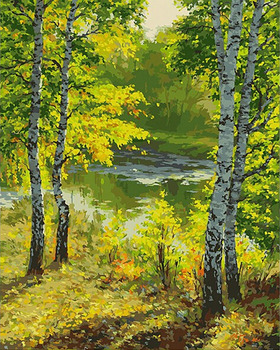 GZ557 4050 Easy Landscape Painting In Summer Forest Classical Diamond