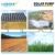 Brushless solar pump