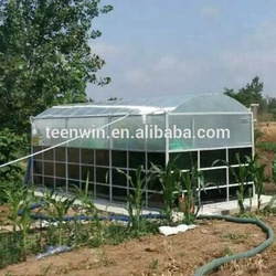 Teenwin china supplier mini portable assembly biogas plant