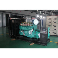 compact design 250kva natural gas generator easy to use