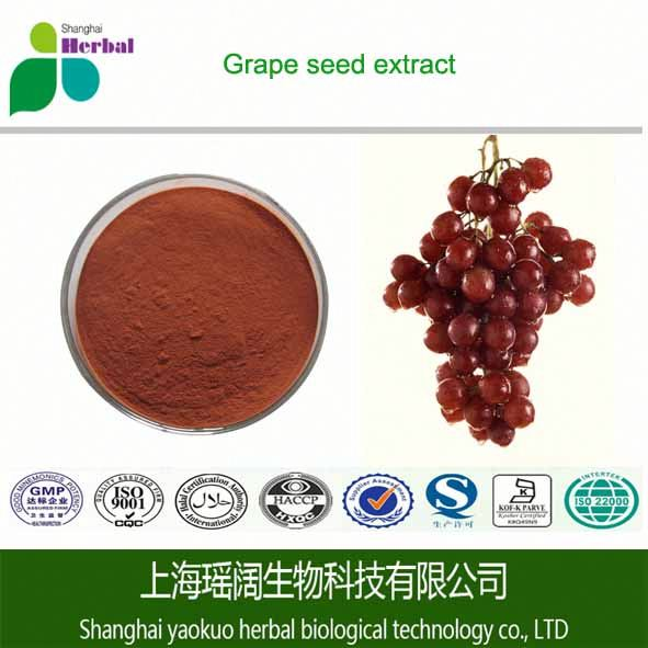 100% water soluble Grape Seed Extract/OPC 95% Procyanidine/organic cosmetic ingredients for skin lightening