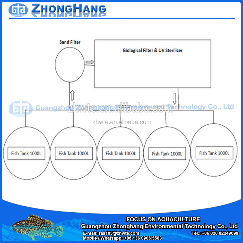catfish farming catfish farming suppliers and manufacturers at