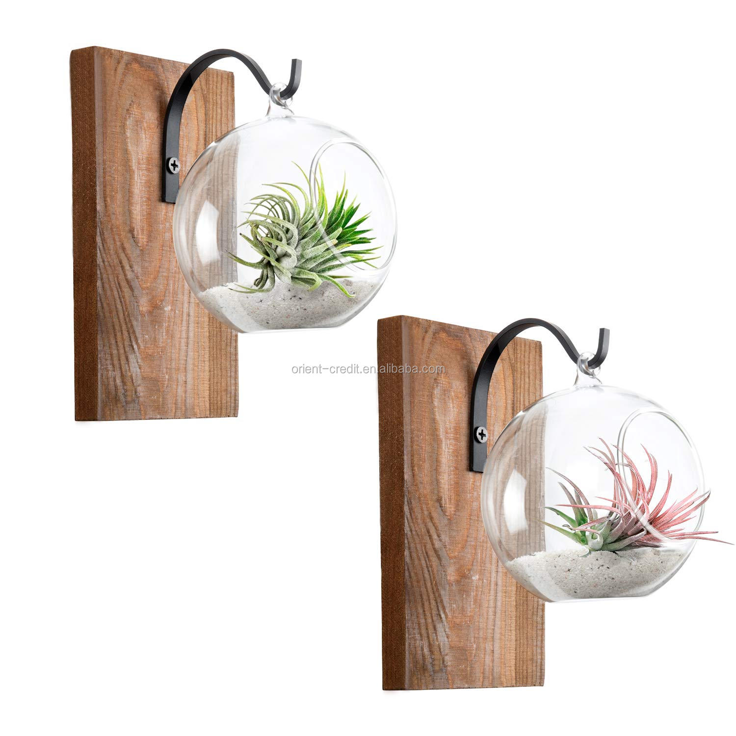 Wall Glass Planter With Wood Board Rustic Decor Air Plant Holder Hanging Terrarium Wrought Iron Hooks For Indoor Office Home Buy Rustic Style