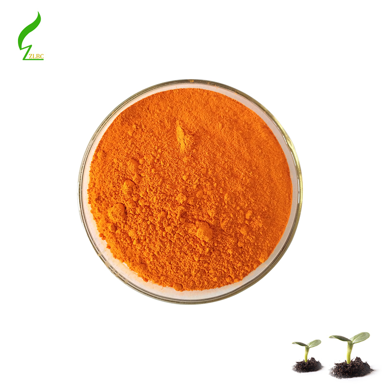 Zelong Provide Top Quality Organic Turmeric <strong>Powder</strong>